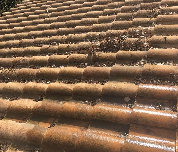 Fire Roof Cleaning Before