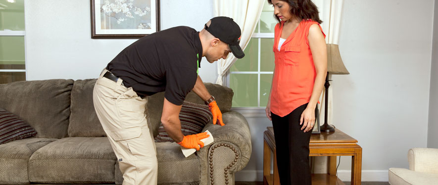 Thousand Oaks, CA carpet upholstery cleaning